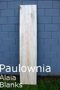 Paulownia Wood Alaia Blanks